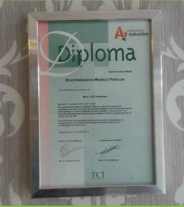Diploma PDH