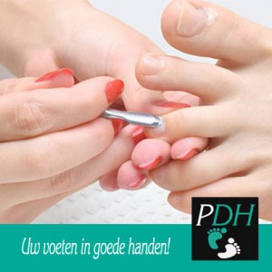 PedicureDenHelderTimeline01